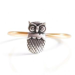 Handcrafted Gold & Silver Owl Ring